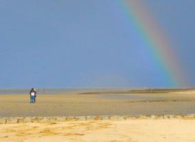 Foto zeigt Meeresgrund bei Ebbe. Herausforderung wie der Wechsel von Wissenschaftlern in die Industrie.