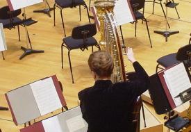 Foto zeigt eine Künstlerin an der Harfe in einer Orchesterpause. Im beruflichen Alltag gibt es viele unauffällige Fähigkeiten, die in einem Bewerbungsprozess Erwähnung verdienen.